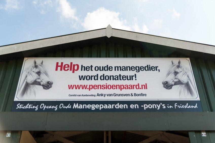 Stichting opvang oude manegepaarden en –pony's
